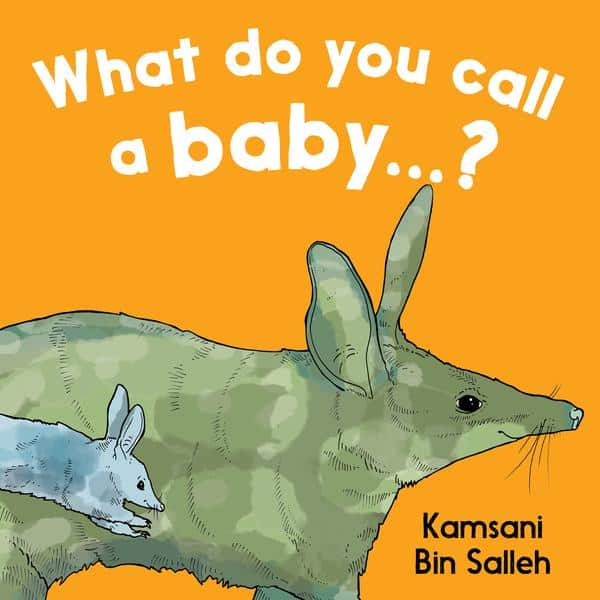 what do you call a baby